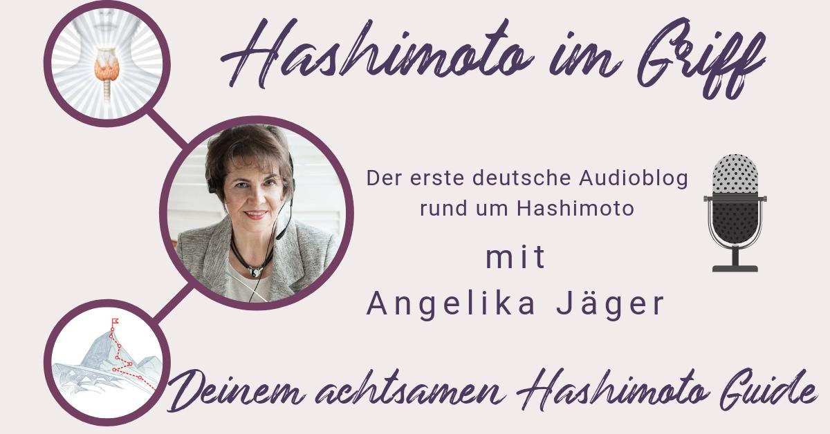 Hashimoto Audioblog